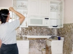 Dealing with Mold in Damaged Homes