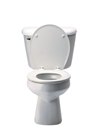 Which Low Flow Toilet is Right For You?