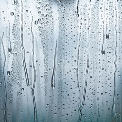 Got Condensation? It's Not Your Windows